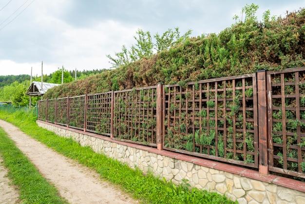 Металлический забор с зелеными туями вдоль забора, зеленый отдых, прогулка по дороге