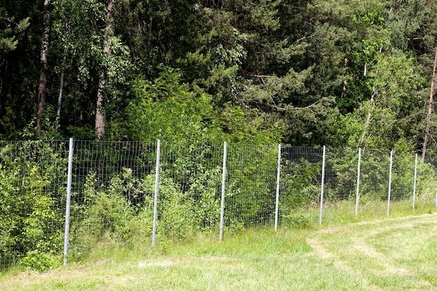 야생 동물의 움직임을 제한하기 위해 숲의 영토에 금속 울타리를 설치하고 구조를 닫습니다.