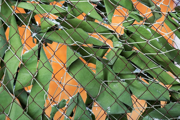 Metal grid fence with green fabric