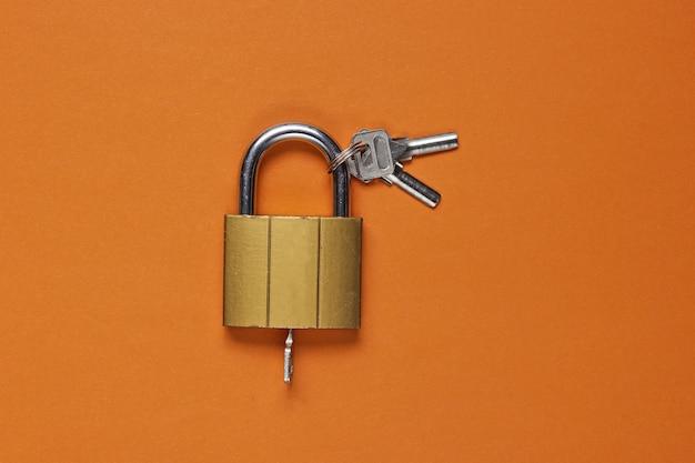브라운에 열쇠를 가진 금속 자물쇠