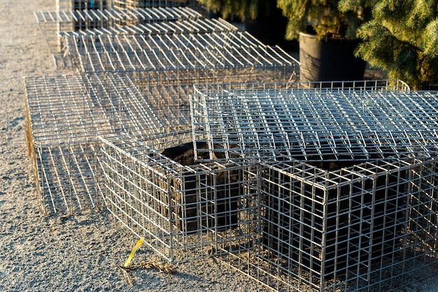 Metal mesh for creating flower beds and traditions of dense form for the growth of flowers in landscape design
