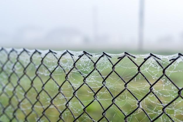 朝のウェブの金属メッシュ柵