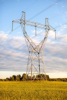 여름에 현장에서 고전압 전선을 위한 금속 기둥 전기 지원. 고전압 기둥 또는 전기 타워는 녹색 분야 에너지 기술 개념에 있는 전송 고전압 전력입니다.