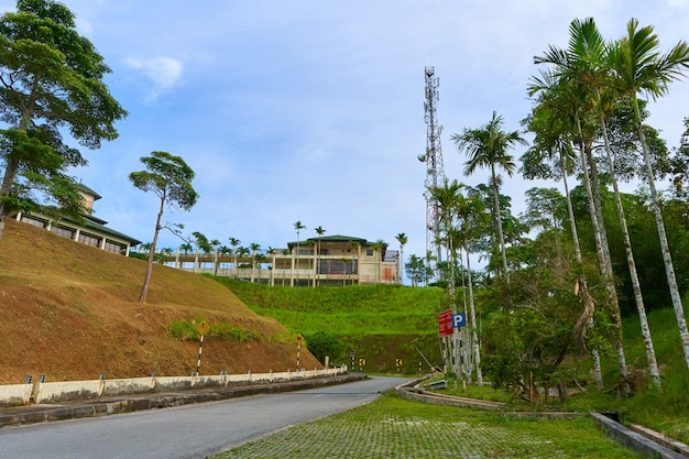 Metal radio tower in the jungle a