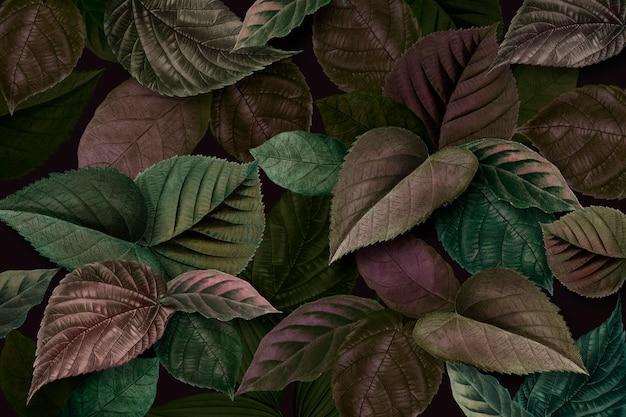 금속 녹색과 보라색 잎 질감 배경