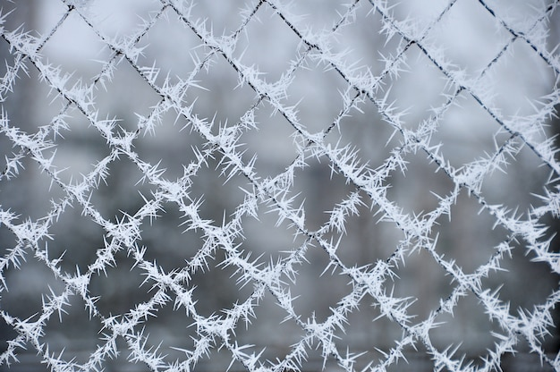 Metallic grid covered with ice needles and hoarfrost. extreme cold weather concept.
