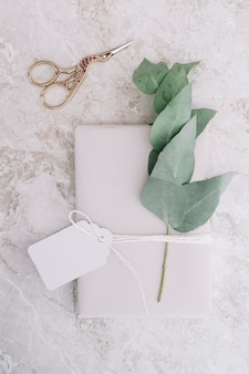 Metallic scissor and blank tag tied on white package with twig on background
