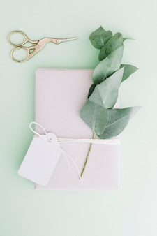 Metallic scissor with wrapped gift box with blank tag and twig on pastel background