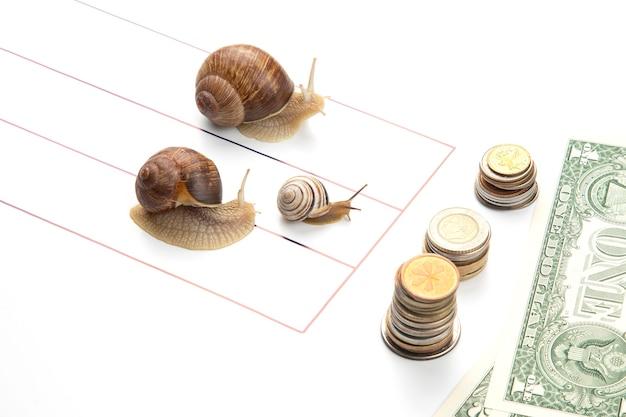 비즈니스에서 재정적 성공을 달성하기위한 은유. 달팽이는 부를 위해 달리는 트랙에서 달린다.