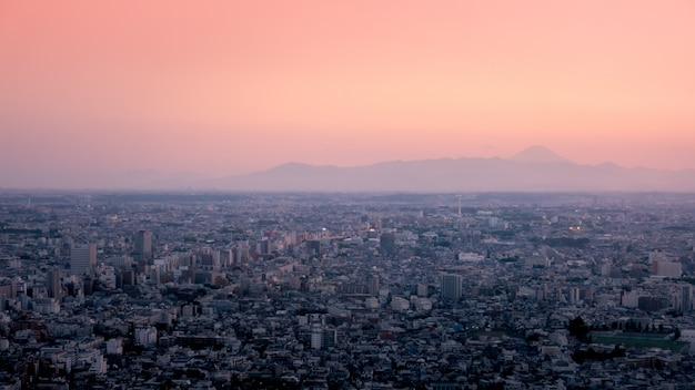 Metropolis of tokyo city with a view of fuji san in the background.