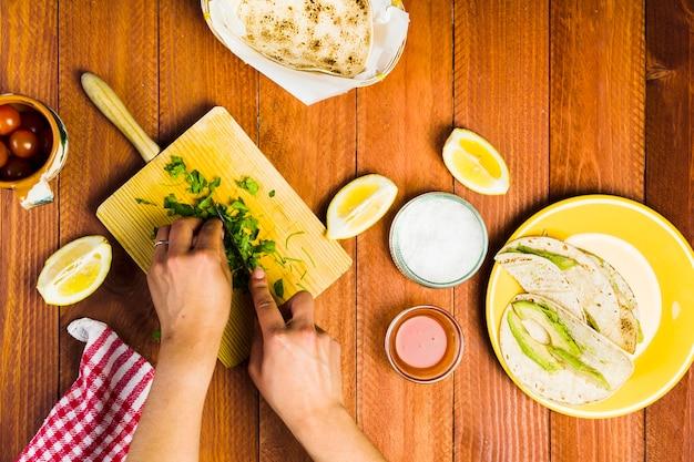 メキシコ料理のコンセプトコンセプト