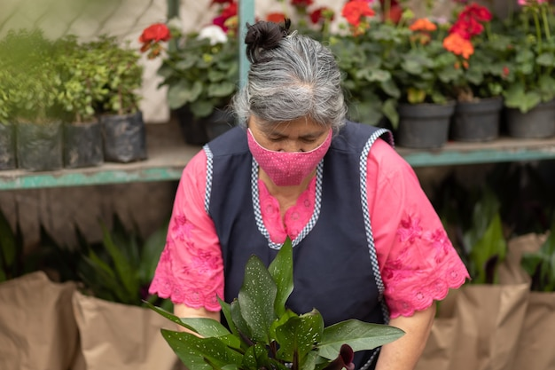 Mexican woman working in nursery xochimilco, mexico