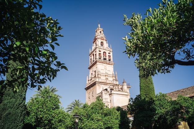 Mezquita of cordoba, andalusia