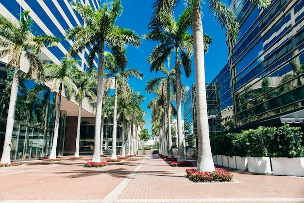 Miami, usa - march 31, 2020 empty streets of miami downtown.