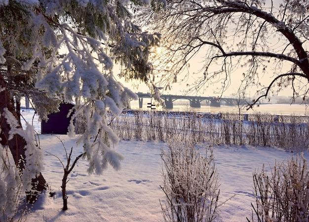 冬のマイケルの堤防。霜で覆われた木の枝、遠くにオクチャブルスキー橋