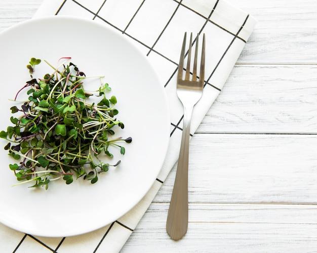 Микро-зелень в тарелке на белом, вид сверху