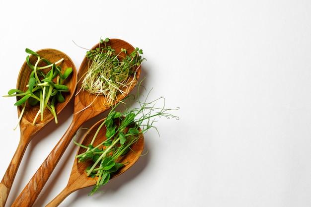 Микро зелень в деревянной ложке на белом фоне