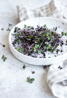 Micro greens. sprouted radish seeds.  sprouting microgreens. seed germination at home. vegan and healthy eating concept.
