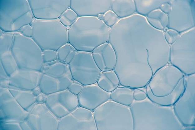 Micrograph of foamy chemical fluid. the chain of compounds of microparticles