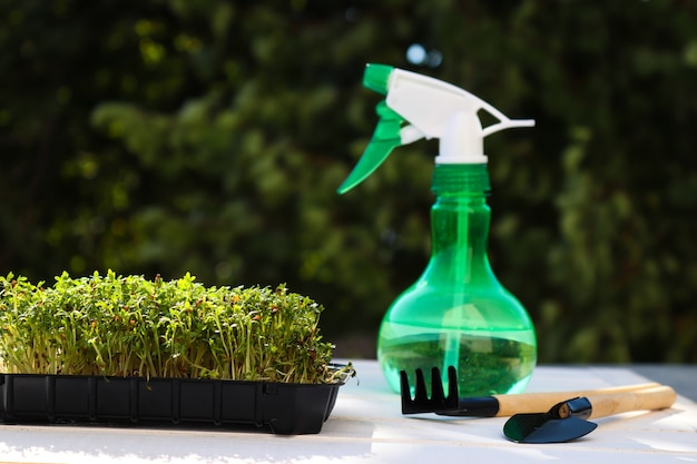 ハンドスプレーとガーデニングツールを備えた緑を背景にしたマイクログリーンガーデニングクレスサラダ...