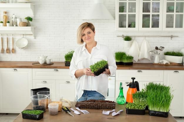 여성의 손에 있는 마이크로그린 생식품 에코프렌들리 슈퍼푸드