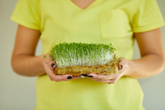 여성 손에 microgreen, 노란색 티셔츠에 여자 생 콩나물, 마이크로 그린, 건강한 식생활 개념, 가정 정원, 채식주의 자, 건강 식품, superfood, 배달 서비스