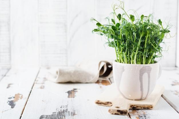 Ростки гороха microgreen на светлом старом деревянном столе. винтажный стиль. концепция веганского и здорового питания. выращивание рассады.