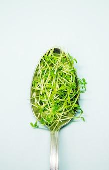 숟가락에 하얀 접시에 microgreen 콩나물 물냉이 양상추. 선택적 초점.음식