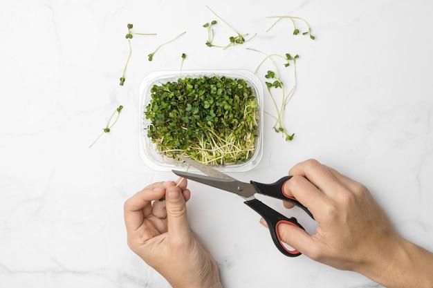 Чаша микрозелени на белом мраморном фоне. концепция суперпродуктов. фото высокого качества