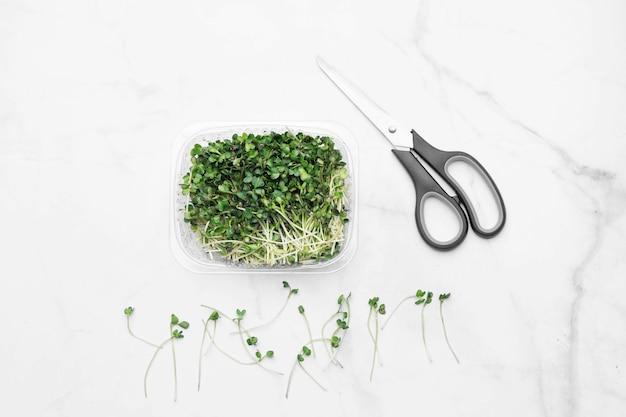 흰색 대리석에 microgreens 그릇입니다. 슈퍼 푸드 개념