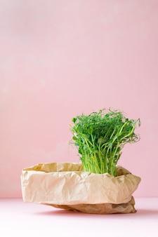 화분에 담긴 가방, 쇼핑백 또는 종이 봉지에 담긴 마이크로그린, 건강한 식생활을 위한 건강하고 맛있는 채식 녹색 음식, 온 가족을 위한 점심, 건강한 채식 메뉴