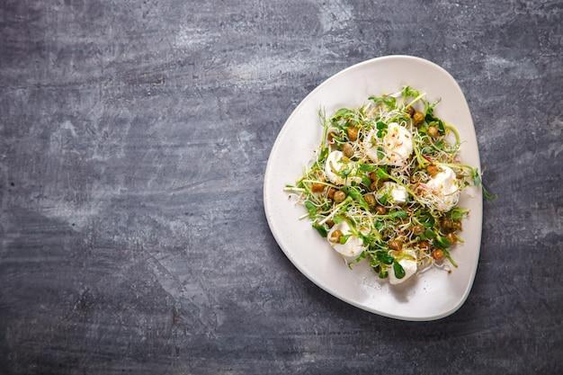 生の芽microgreens。健康食品のコンセプト。