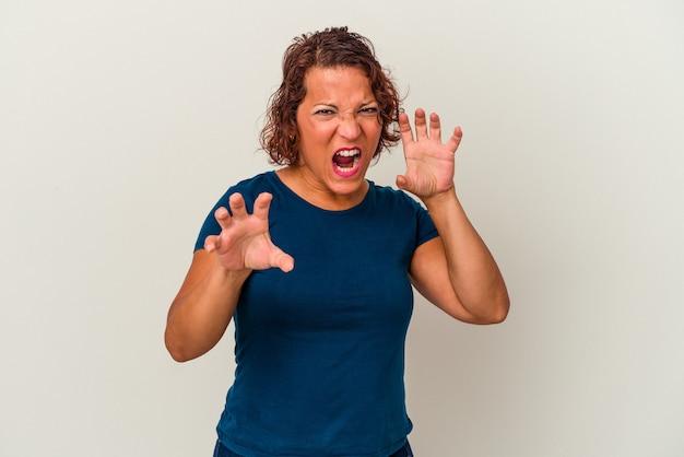 猫を模倣した爪、攻撃的なジェスチャーを示す白い背景に分離された中年ラテン女性。