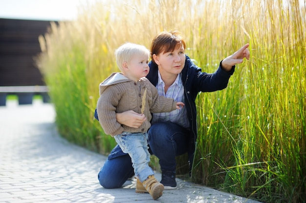 Middle age woman and her cute toddler grandson playing outdoors at sunny spring or autumn day