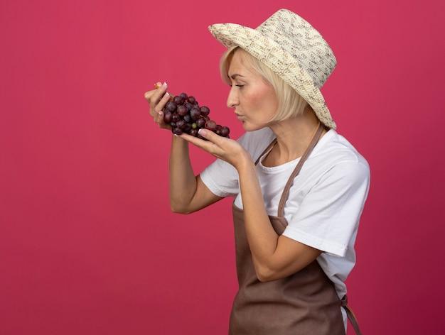 Светловолосая женщина-садовник средних лет в униформе в шляпе, стоящая в профиль и смотрящая на гроздь винограда, делает жест поцелуя, изолированный на малиновой стене с копией пространства