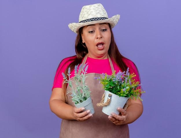 エプロンと帽子をかぶった中年の庭師の女性が紫色の背景の上に立って驚いているtjemを見て鉢植えの植物を保持しています