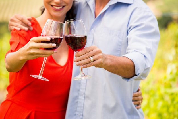 Midsection of couple toasting wine