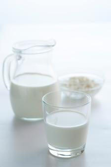 Молоко в кувшине и творог в миске на светлом фоне с копией пространства