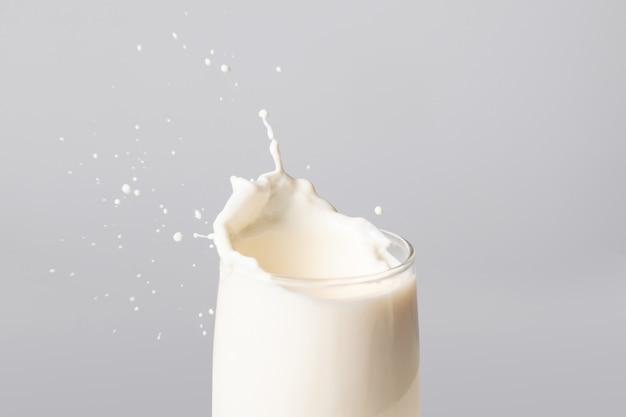 Milk splash on the edge of glass over grey background, real milk in studio shot