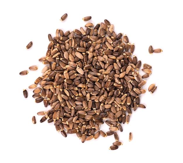 우유 엉겅퀴 씨앗, 흰색 배경에 고립입니다. silybum marianum, scotch thistle 또는 marian thistle. 확대. 평면도.