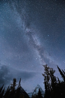 Milky way galaxy with starry on mount assiniboine in the night sky