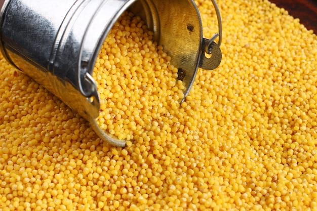 Millet in the bucket closeup