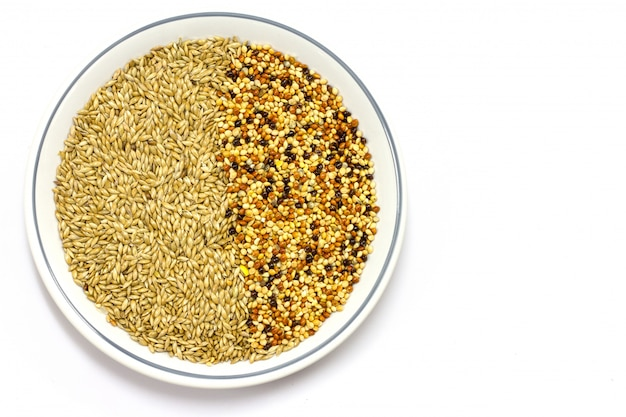 Millet dry seeds beautiful textured background