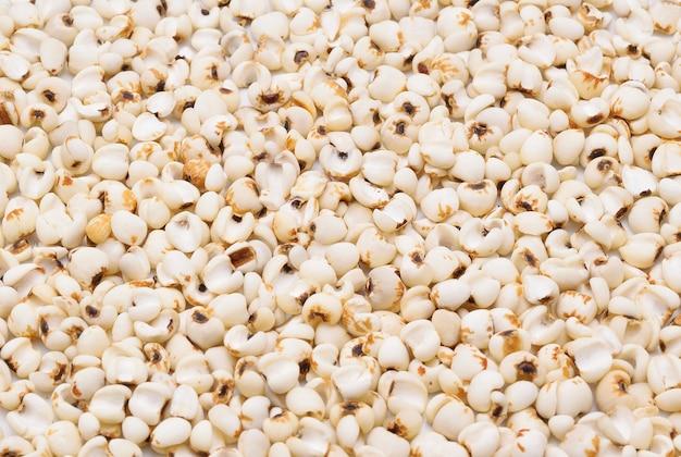밀레 곡물 배경