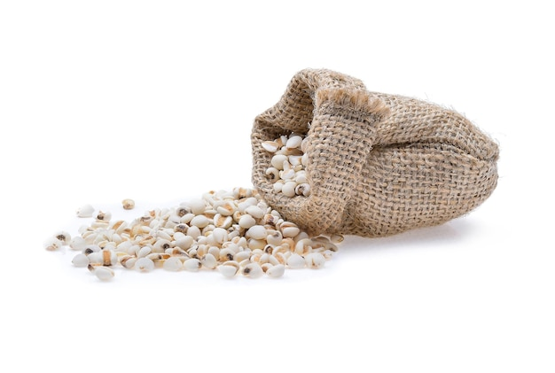 Millet grains on white background