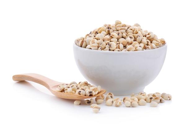Millet grains on white