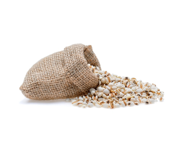 キビ米、白で分離されたキビの穀物。