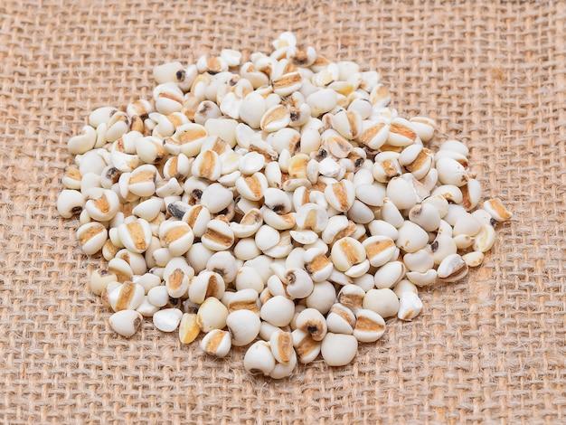Millet rice , millet grains