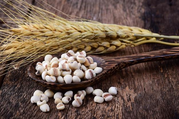 Millet in wood spoon on wooden