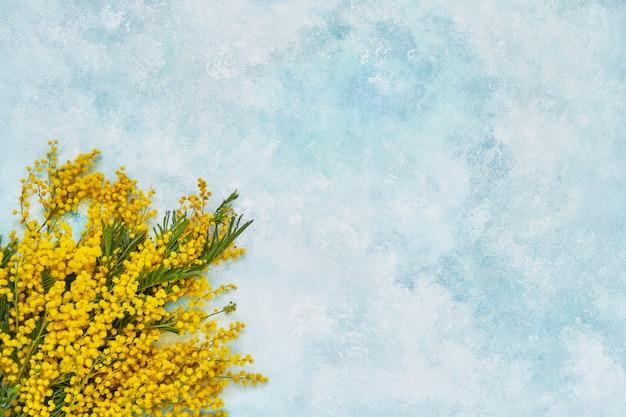 밝은 파란색 배경에 미모사 꽃 꽃다발입니다. 공간, 평면도를 복사합니다.